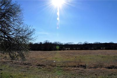 Hico Farm & Ranch For Sale: 25100 State Hwy 6