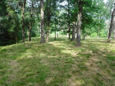 Streetman Residential Lots & Land For Sale: Lot 3 Lincoln Dr.