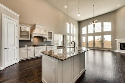 Little Elm Single Family Home For Sale: 13820 Blueberry Hill Drive