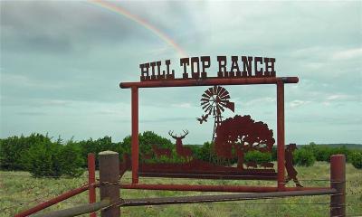 Possum Kingdom Lake Farm & Ranch For Sale: 337 Highway