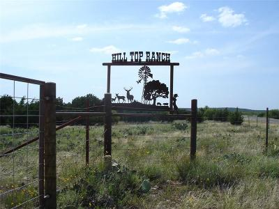 Possum Kingdom Lake Farm & Ranch For Sale: Hwy 337
