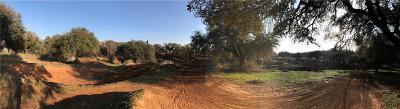 Millsap Farm & Ranch For Sale: 11031 W Ih 20