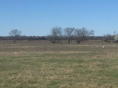Caddo Mills TX Farm & Ranch Active Option Contract: $199,500
