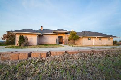 Weatherford Single Family Home For Sale: 205 Bluff Ridge Road
