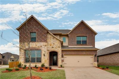 Lewisville Single Family Home For Sale: 1008 Olivia Drive