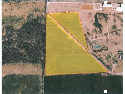Celina, Carrollton Farm & Ranch For Sale: 0000 County Rd 58