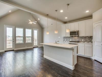 Flower Mound Townhouse For Sale: 4205 Broadway Avenue