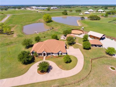 Weatherford Single Family Home For Sale: 200 Silver Saddle Circle