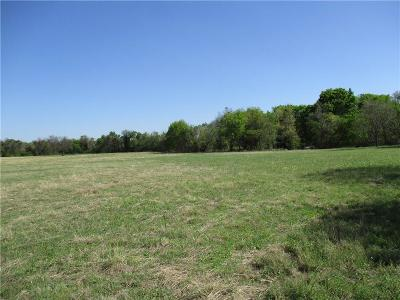 Springtown Residential Lots & Land For Sale: 00 Holbrook
