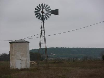 Hamilton County Farm & Ranch For Sale: 9368 S Fm 1602