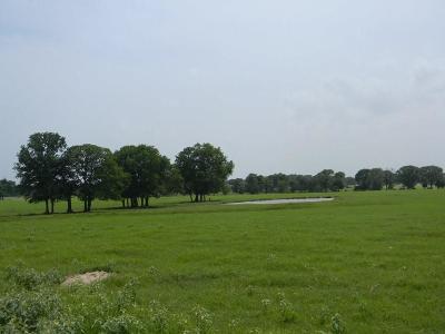 Cedar Creek Lake, Athens, Kemp Farm & Ranch For Sale: 6443 Fm 2495