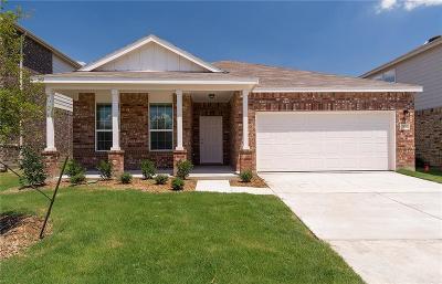 Little Elm Single Family Home For Sale: 713 Jonius Creek Drive