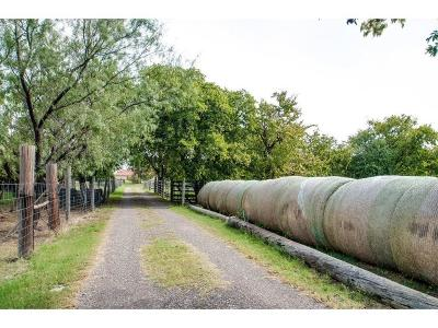 Little Elm Farm & Ranch For Sale: 2415 W Eldorado Parkway
