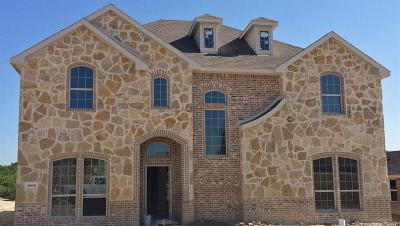 Rockwall Single Family Home For Sale: 1006 Embarcadero Drive