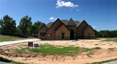 Springtown Single Family Home For Sale: 156 Spring Meadow Drive