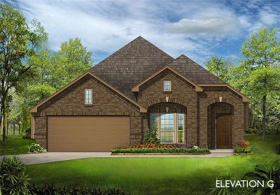 Denton Single Family Home For Sale: 9517 Meadowpark Drive