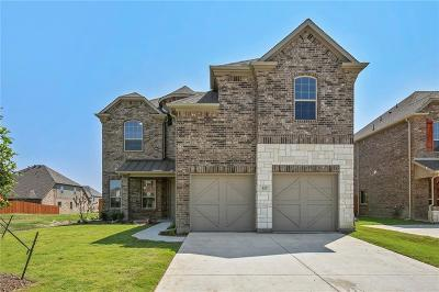Grand Prairie Single Family Home For Sale: 317 Burberry Drive
