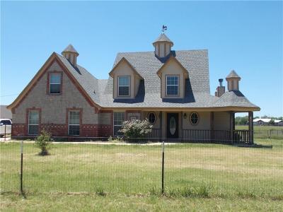 Reno Single Family Home For Sale: 1000 Old Reno Road