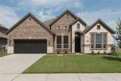 Little Elm Single Family Home For Sale: 1504 Torrent Drive