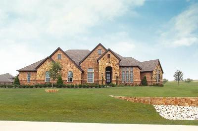 Fort Worth Single Family Home For Sale: 12616 Villa Milano Drive