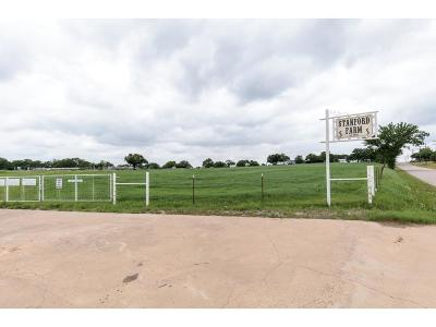 Burleson Single Family Home For Sale: 1500 County Road 602