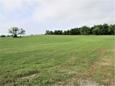 Stephenville Residential Lots & Land For Sale: 00 Hill Valley Drive