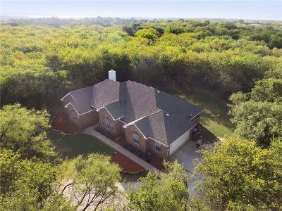 Little Elm Single Family Home For Sale: 4410 W Dickson Lane