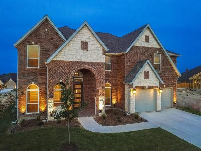 Fort Worth TX Single Family Home For Sale: $397,745