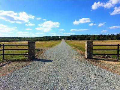 Millsap Farm & Ranch For Sale: 0002 Fm 113 South