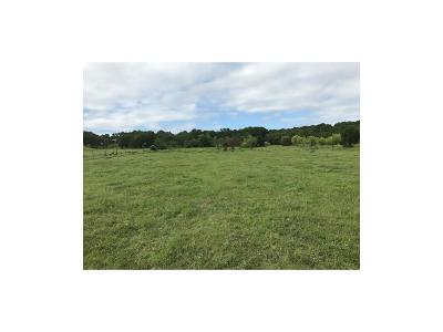Mineral Wells Farm & Ranch For Sale: 180 Highway