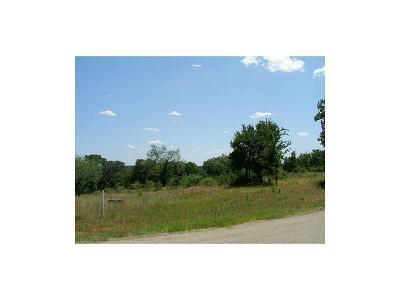 Millsap Residential Lots & Land For Sale: 3 Tr W Bluff Ln