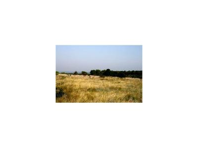 Gordon Residential Lots & Land For Sale: H9 Stagecoach Trail