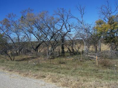 Brownwood TX Farm & Ranch For Sale: $6,500