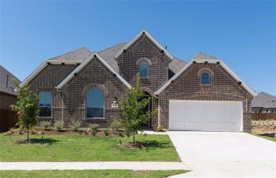Fort Worth Single Family Home For Sale: 4309 Green Teal Street
