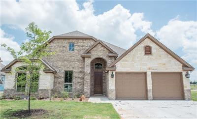 Willow Park Single Family Home For Sale: 124 Breeders Drive