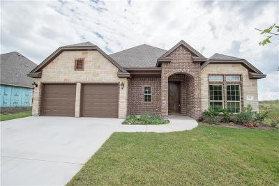 Willow Park Single Family Home For Sale: 174 Breeders Drive