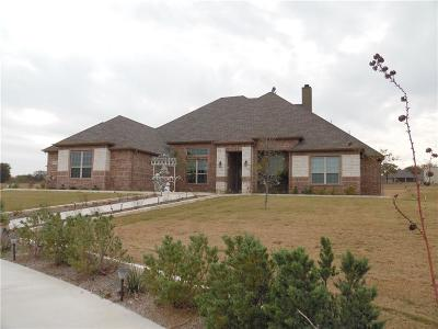 Weatherford Single Family Home For Sale: 176 Brook Hollow Lane