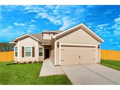 Dallas Single Family Home For Sale: 14281 Bridgeview Lane