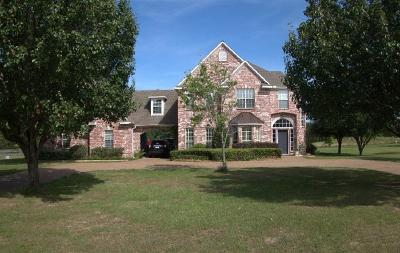 Wills Point Single Family Home For Sale: 15 Hillside Drive