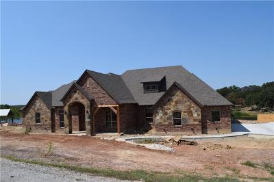 Millsap Single Family Home For Sale: 242 E Bluff Lane