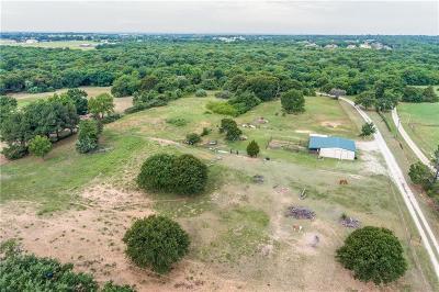 Aubrey Single Family Home For Sale: 1149 Raymond Burch Trail