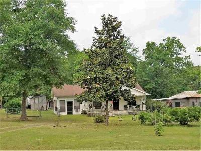 Longview Single Family Home For Sale: 703 Hamby Road
