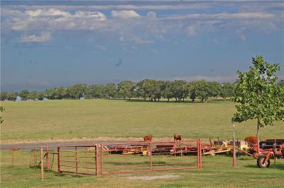 Comanche County Farm & Ranch For Sale: 150 County Road 475