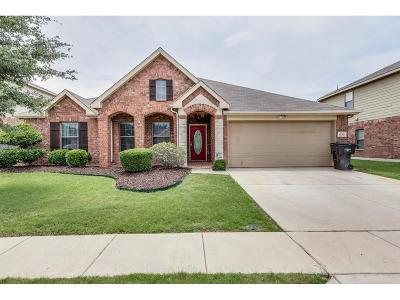 Fort Worth TX Single Family Home Sold: $204,900