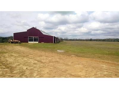 Big Sandy Commercial For Sale: 601 E Water Tower Road