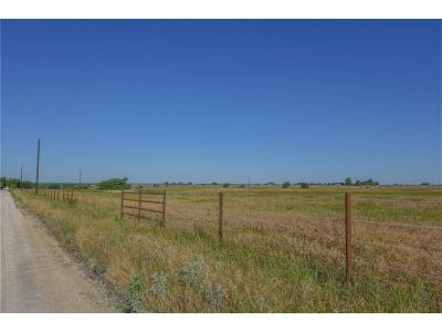 Stephenville Residential Lots & Land For Sale: Tbd County Road 233