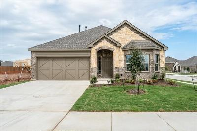 Fort Worth Single Family Home For Sale: 3749 Holly Brook Drive