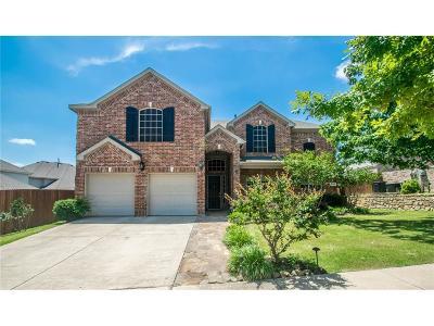 Denton Single Family Home For Sale: 6804 Smoketree Trail