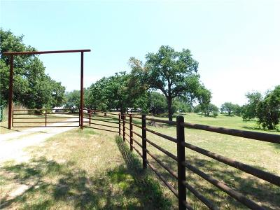 Weatherford Single Family Home For Sale: 552 Appleton Drive