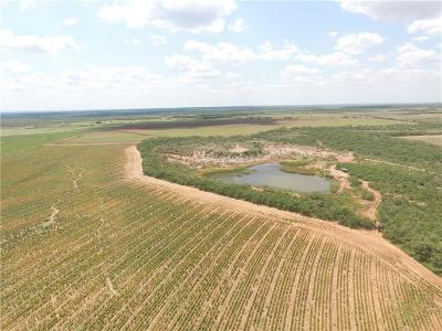 Farm & Ranch For Sale: County Rd 425